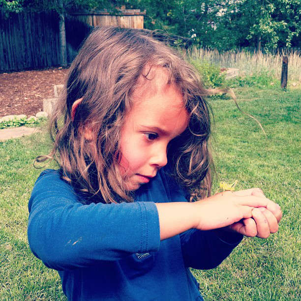 Nyla studying the beauty of a grasshopper found in the backyard.