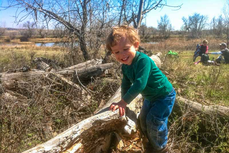 Silas discovers a complex of brush and trees. His excitement is contagious, and he is shortly joined by other children.