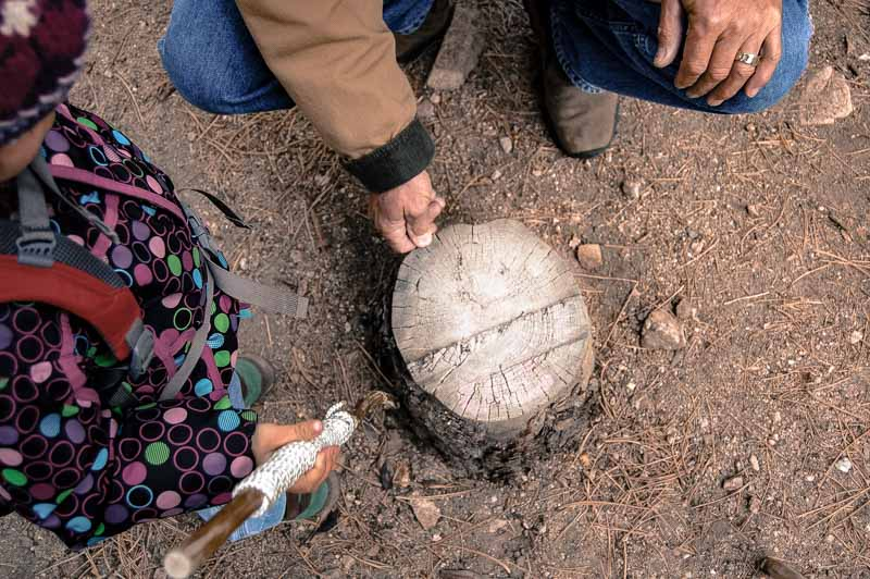 A naturalist explains tree ring dating to my daughter. We estimated the tree was 95 years old!